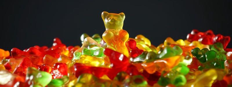 gold-bear-gummi-bears.jpg